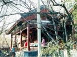 china35